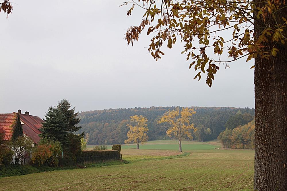 Herbst2015_11