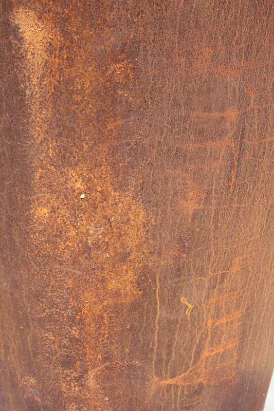 Rost_25a