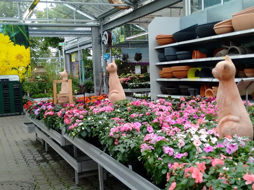 39_Gartencenterkatz1